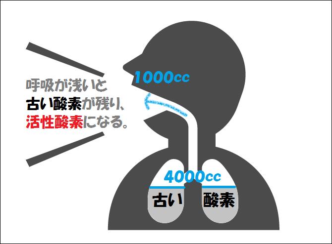 活性酸素①